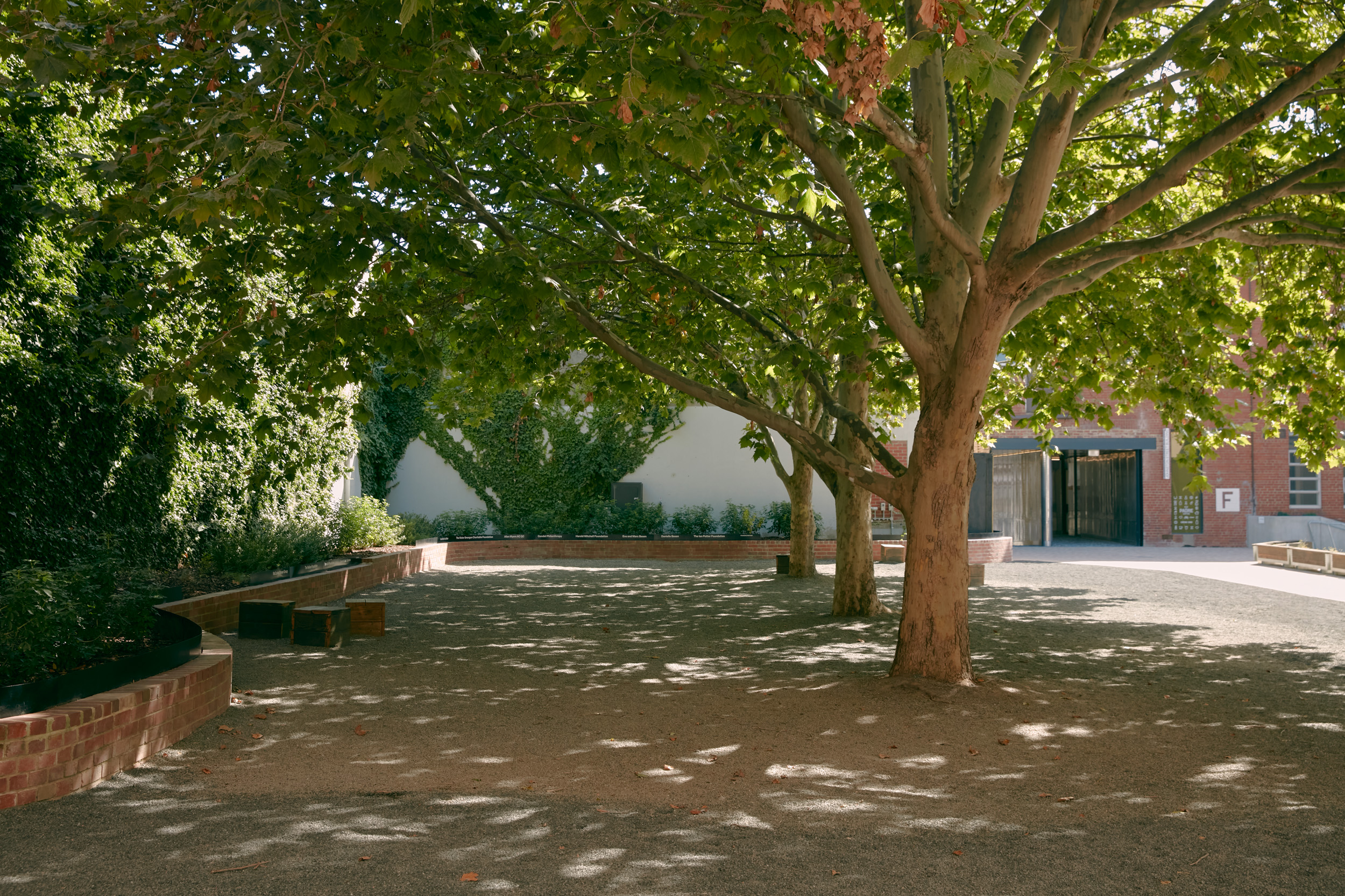 Empty courtyard with shady trees